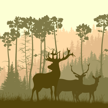 horny: Vector square illustration of grazing deer family in meadow on background of pine forest.