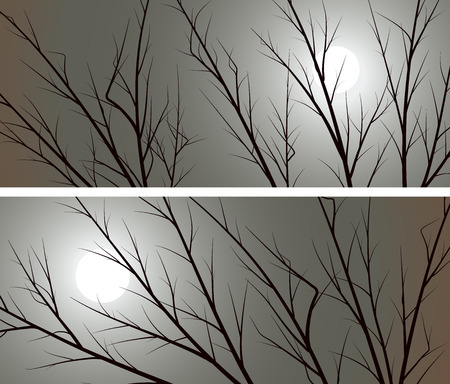 afterglow: Set of horizontal abstract wide banners branches of trees against the moon. Illustration
