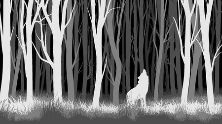 Abstract horizontal illustration of night forest with trees and wolf.