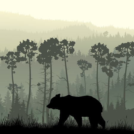 Square illustration of grassy hillside and coniferous wood with bear.