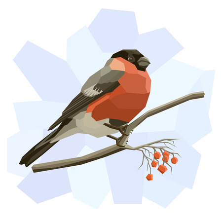 bullfinch: Vector simple illustration of bullfinch bird on tree branch in angular cartoon style. Illustration