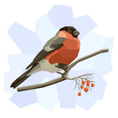 the ornithology: Vector simple illustration of bullfinch bird on tree branch in angular cartoon style. Illustration