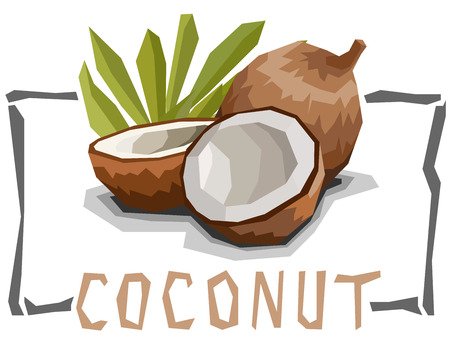 Vector simple illustration of coconut with halves in angular cartoon style.