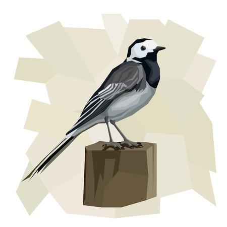 single animal: Vector simple illustration of wagtail bird on wooden post  in angular cartoon style. Illustration