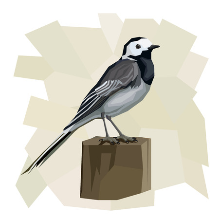 wooden post: Vector simple illustration of wagtail bird on wooden post  in angular cartoon style. Illustration