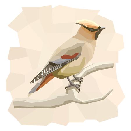 single animal: Vector simple illustration of waxwing bird on branch in angular cartoon style.