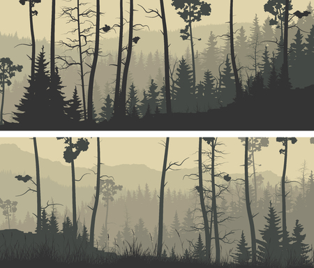 Set of horizontal wide banners coniferous forest with trunks of pine trees and hills. Illustration