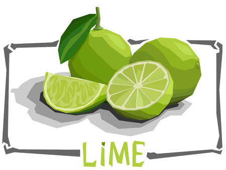 lime: Vector simple illustration of limes with halves in angular cartoon style.
