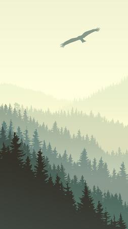 coniferous forest: ilustración vertical de las colinas del bosque de coníferas brumosas con el águila.