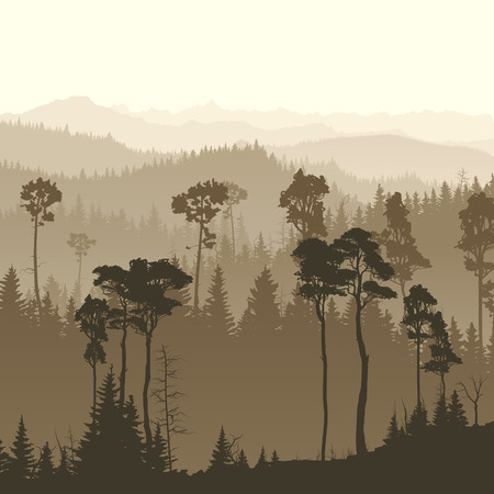 bosk: Square illustration of morning misty coniferous forest hills.