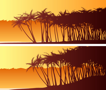Set of horizontal wide banners of palm trees on beach at sunset. Illustration