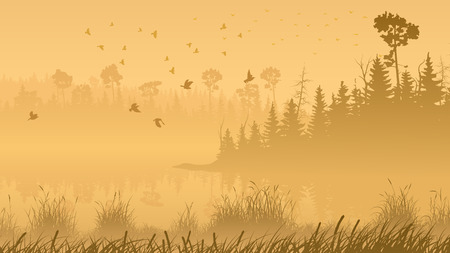 bosk: Horizontal illustration misty coniferous forest with lake and grass on shore.