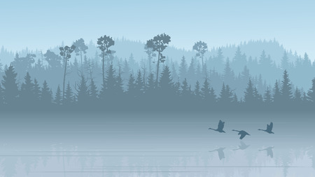 Horizontal illustration morning misty coniferous forest hills with its reflection in lake with swans ( in blue tone). Illustration