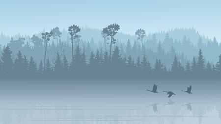 Ilustración horizontal mañana brumoso bosque de coníferas colinas con su reflejo en el lago con cisnes (en tono azul).