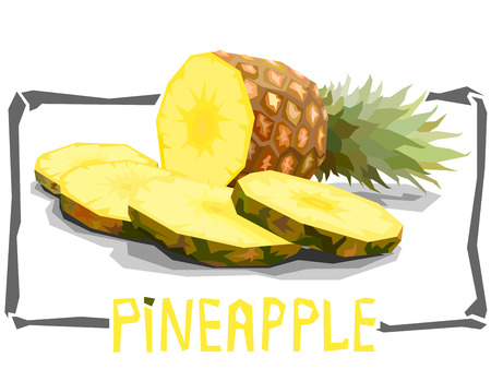 Vector simple illustration of pineapple with slices in angular cartoon style.