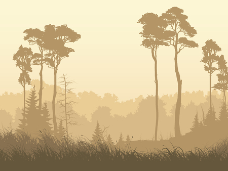 Horizontal illustration of morning misty meadow with grass and coniferous forest.