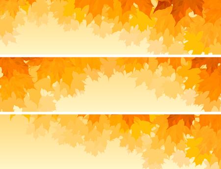 オレンジの葉を持つ水平方向のバナーメープルツリークラウンのセット。