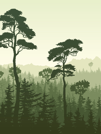 Vertical illustration of forest with green coniferous trees (sequoia) and hills.