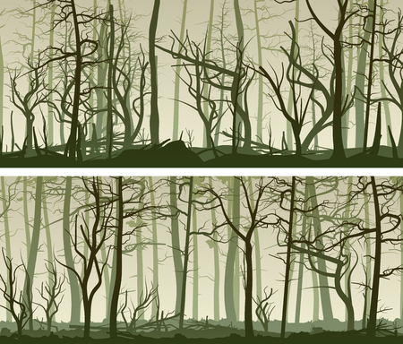 Set vector horizontal wide banners with many tree trunks (coniferous,deadwood and deciduous forest). Ilustrace