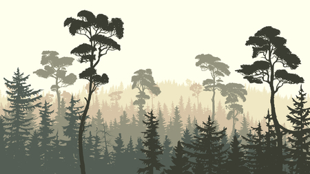 Horizontal green brown illustration of coniferous forest (spruce, pine).