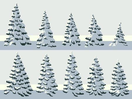 Set of vector simple illustration of snowy spruce trees (fir, fir-tree). Ilustrace