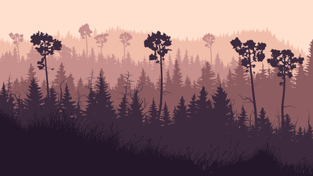 Horizontal illustration of coniferous twilight forest with grass glade and hills in violet tones. Ilustrace