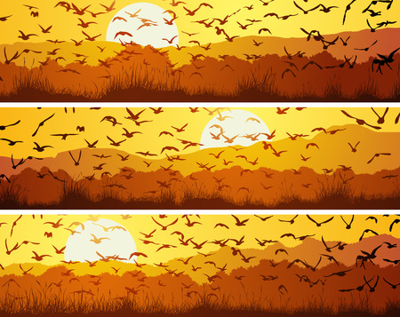 Set of horizontal banners with flock of birds at sunset over meadow.