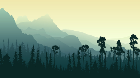 Horizontal illustration morning mist in coniferous forest (pine and spruce) with mountains.