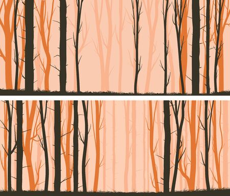 Set of horizontal wide banners with pines trunks and grass at sunset.
