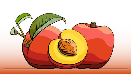 simple illustration group of peaches with half on line (side view).