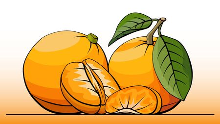 simple illustration group of tangerines with half on line (side view).