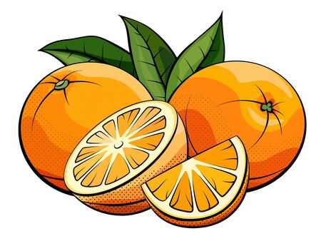 Vector simple illustration of oranges group with halves on white background.