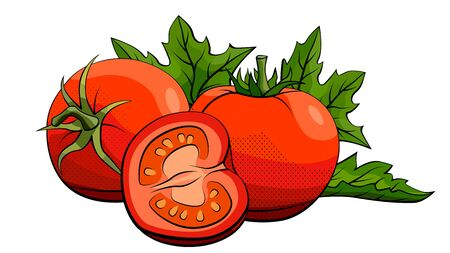 Vector simple illustration of tomatoes group with halves on white background.