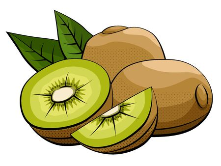 Vector simple illustration of kiwi fruits group with halves on white background. Ilustração