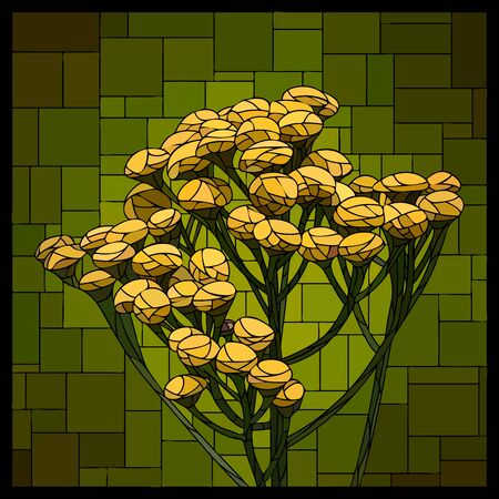 Vector angular square mosaic with blooming tansy in stained-glass window.