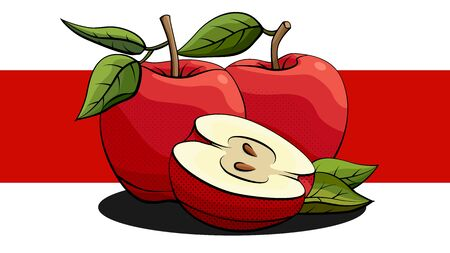 Vector simple illustration of red apples and halves with shadows on red line. Ilustração