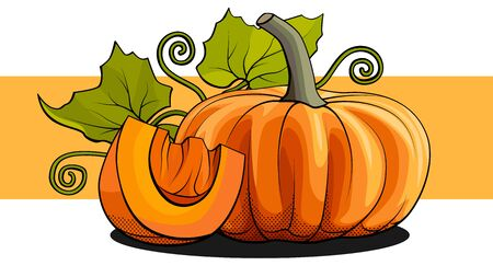 Vector simple illustration of a pumpkin with a slice and foliage on an orange stripe.  イラスト・ベクター素材