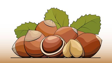 Vector simple illustration a group of hazelnuts with nuts on a line (side view).