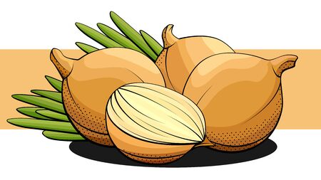 Vector simple illustration of bulb onions with half and foliage on a label.