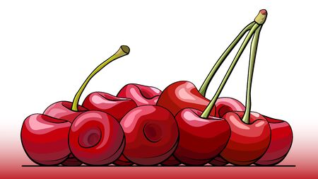 Vector simple illustration a group of cherry berries on a line (side view).