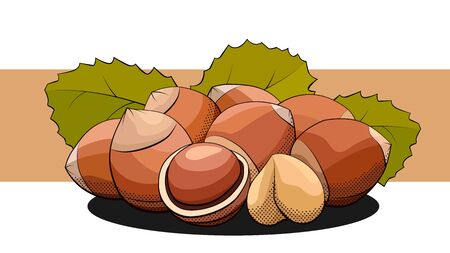 Vector simple illustration of a group of hazelnuts with nuts on a label.  イラスト・ベクター素材