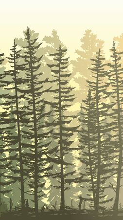 Vertical sunny illustration view from thicket coniferous forest with trunks of fir trees and treetops.