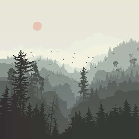 Square illustration of misty coniferous forest hills with canyons and flock of birds. Vetores