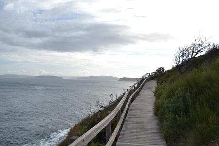 windswept: Windswept Boardwalk by the Sea