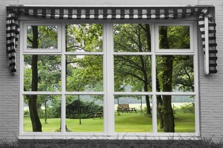 reflexion: Reflexi�n de un jard�n en la ventana