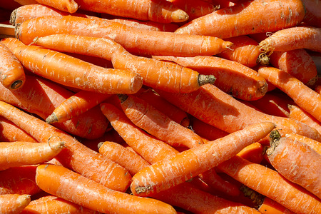 etymology: Fresh carrots at the local farmers market