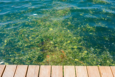 Pollution problem, environmental pollution, garbage in the ocean. photo