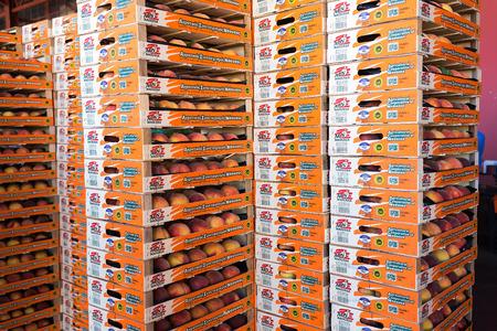 """cooperativismo: NAOUSSA, GRECIA- 10 de julio 2014: Productos de la Cooperativa Agr�cola de Naoussa, Grecia, apilados en cajas. Los famosos """"Naoussa Peaches"""", son el principal producto de la zona. La producci�n de frutos."""