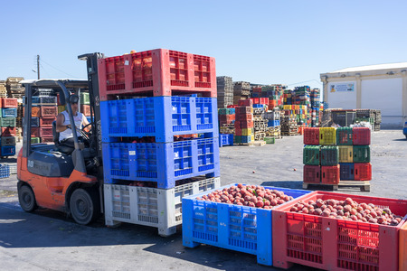 NAOUSSA, GREECE- JULY 10, 2014: A worker transporting boxes with fruits of Agricultural Cooperative of Naoussa, Greece. The famous Naoussa Peaches, are the area's main product. Fruit production.