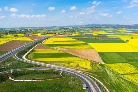 oil rape: Aerial view of road passing through a rural landscape with blooming rape in northern Greece